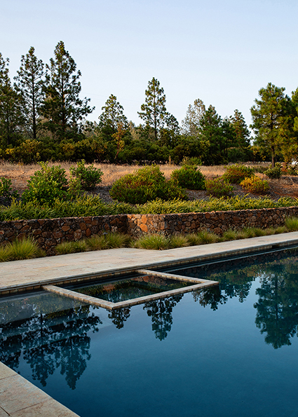 High End Napa Residential Landscape design, pool photographed by Ella Bessette